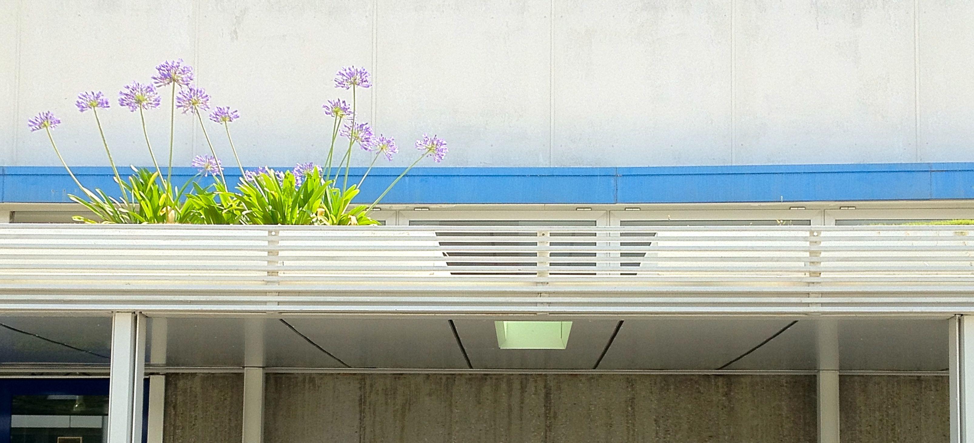 tettoia giardino pensile_Selex
